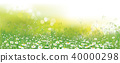Vector nature  background, daisy  flowers field. 40000298
