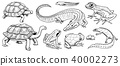 Crocodile and turtle. Reptiles and amphibians set. Pet and tropical animals. Wildlife and Frogs 40002273
