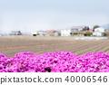 일본의 시골 풍경과 다년초 40006546