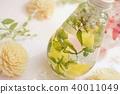 Herbarium 40011049