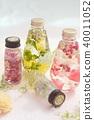 Herbarium 40011052