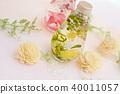 Herbarium 40011057