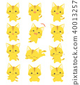 고양이 40013257