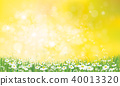Vector nature  background, daisy  flowers field. 40013320