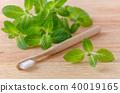 natural, mint, toothbrush 40019165