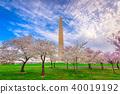 Washington DC in Spring 40019192