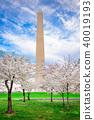 Washington DC in Spring 40019193