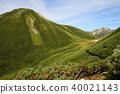 northern alps, mt. washiba-dake, suishoudake (kurodake) 40021143