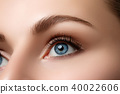 Close up view of beautiful blue female eye 40022606