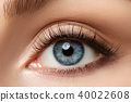Close up view of beautiful blue female eye 40022608