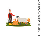 Cute young girl feeding sheep on farmyard. Farmer woman in shirt, overall and rubber boots. Wooden 40026699
