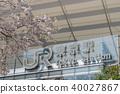 tokyo station, cherry blossom, cherry tree 40027867