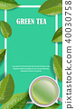 Vector green tea horizontal banner blue tea leaves 40030758