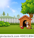 Cute dog sitting in front of a kennel in a garden 40031894