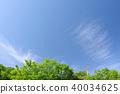 푸른 하늘, 파란 하늘, 신록 40034625