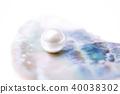 壳 珍珠 海洋 40038302
