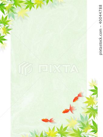 金鱼 枫树 枫叶 40044788