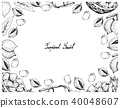 Hand Drawn Frame of Pineapple and Abiu Fruits 40048607