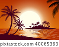 coconut, island, ocean 40065393