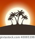 coconut, evening, island 40065396