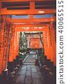 Fushimi Inari Taisha torii, Kyoto, Japan 40065515