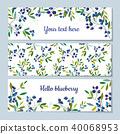 Blueberry banners set illustration 40068953