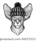 Oriental cat Cool animal wearing knitted winter hat. Warm headdress beanie Christmas cap for tattoo 40072553