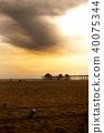 加州 加利福尼亞 亨廷頓海灘 40075344