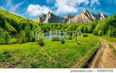 trees near the lake in High Tatras 40084700