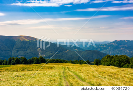 mountain road through hillside with forest 40084720