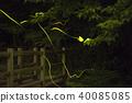 螢火蟲的軌跡 40085085