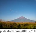 從草甸看見的夏天富士 40085218