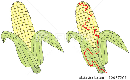 Corn maze 40087261