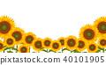 sunflower, sunflowers, summer 40101905