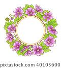 pink, malva, flower 40105600