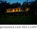 fireflies in the country side of Chiayi at night 40111300