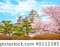 Himeji Castle with beautiful cherry blossom 40112385