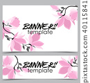 flower, magnolia, banner 40115841