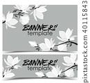 flower, magnolia, banner 40115843