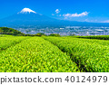 << จังหวัดชิซุโอกะ >> ภูเขาฟูจิและไร่ชา 40124979