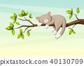 Little Cat Is Sleeping 40130709
