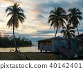 Vintage trailer and palm trees 40142401