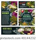 vegetable chalkboard vector 40144232