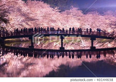 弘前公園櫻花西島春橋橋反射 40144638