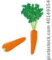 ผัก,อาหาร,วัตถุดิบทำอาหาร 40149354