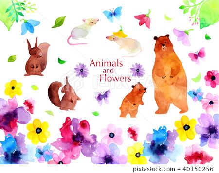 動物 花朵 花 40150256