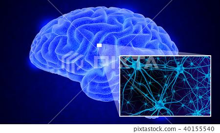 Human brain 3D render - Stock Illustration [40155540] - PIXTA