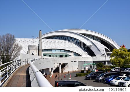 東京辰巳國際游泳學校 40156965