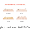 Human skin types and conditions vector on white 40159869