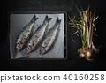 Sea Bass 40160258